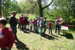 Bilžu galerija: Meža diena Stelpē